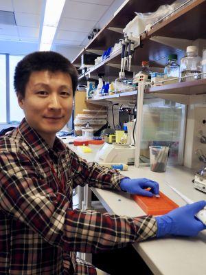 Yao Liu, PhD